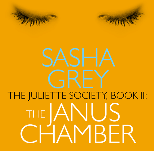 The Janus Chamber book cover